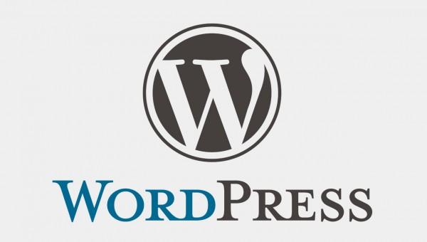 Jak kupić domenę i zainstalować WordPressa (tablet)